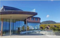 Visite domaine viticole Rolly Gassmann 6/11/2021