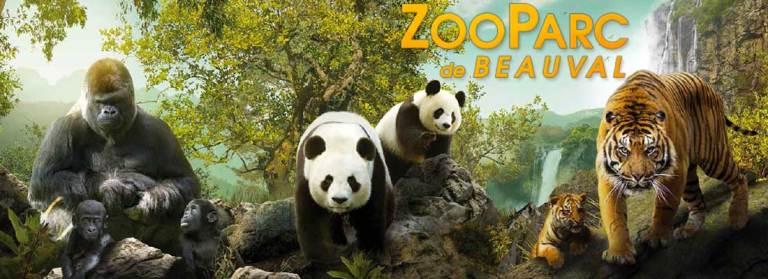 zoo-de-beauval